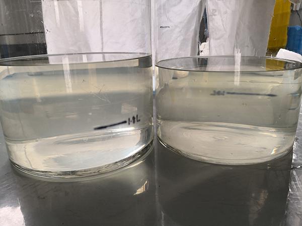 左边连续流离心结果、右边装入离心杯的离心结果